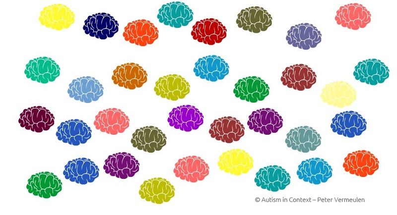 Neurodiversity training - Peter Vermeulen